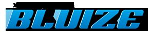 Bluize Logo